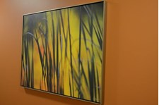 - Image360-Plymouth-CanvasArt&Signage-ProfessionalServices (3)